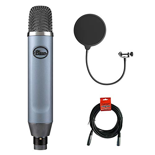 Blue Ember Small Diaphragm Studio Condenser Microphone with XLR-XLR Cable & Pop Filter Bundle ()