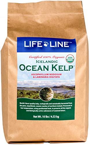 Life Line Pet Nutrition Organic Ocean Kelp Supplement for Skin & Coat, Digestion, Teeth & Gums in Dogs & Cats, 10 lb (Coat Skin Horse & Supplements)