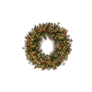 National Tree 48 Inch Wintry Pine Wreath with Cones, Red Berries, Snowflakes and 200 Clear Lights (WP1-300-48W)