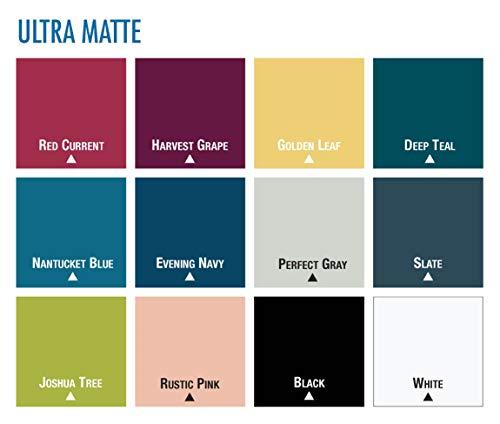 Rust-Oleum 331181 Spray Paint Painter's Touch 2X Cover, 12 Oz, Ultra Matte White