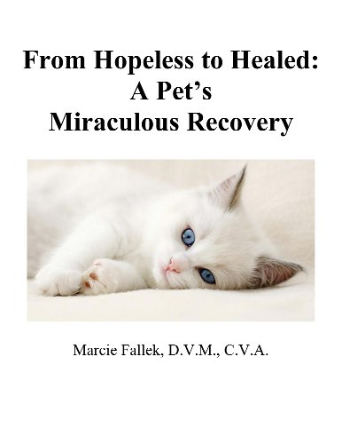 HOPELESS TO HEALED: A Pet's Miraculous Recovery (Krishna's Flute: the Spiritual Journey of a Holistic Veterinarian Book 2)