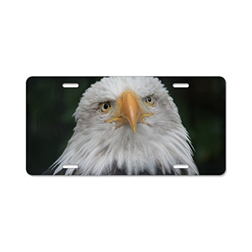Lone Bald Eagle License Plate Frames Stainless Steel Car Licence Plate Covers 4 - Eagle Plate License Frame Lone