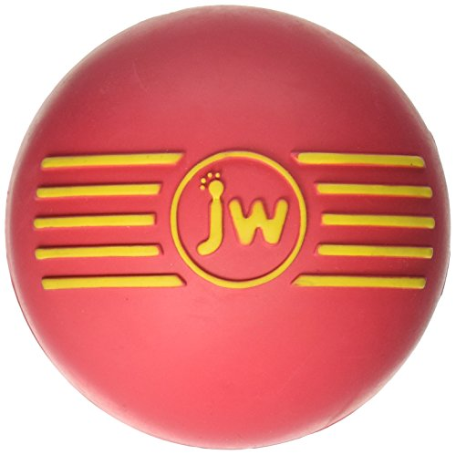 Jw Squeaky Toy - 4