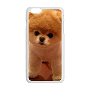 Lucky Boo the Dog Cell Phone Case Cover For SamSung Galaxy S5 Mini