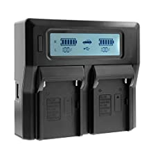 Bevik Lcd Dual Channel Charger For Sony NP-FV30 NP-FV40 NP-FV50 NP-FV70 NP-FV90 NP-FV100 Digital Camera/Camcorder Battery