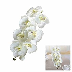 GOOTRADES Artificial Butterfly Orchid Silk Flower Home Garden Phalaenopsis Bouquet Decor (10, White) 87