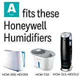 Honeywell Replacement Wicking Filter A, 1