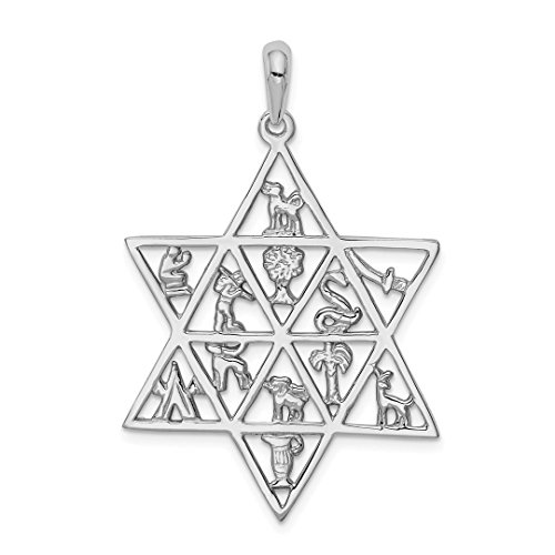 14k White Gold 12 Tribes Jewish Jewelry Star Of David Pendant Charm Necklace Religious Judaica Fine Jewelry Gifts For Women For Her ()