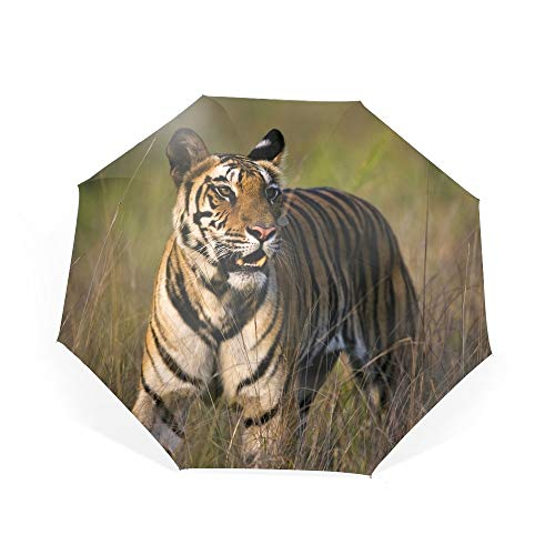 - Bengal Tiger Bandhavgarh National Park Travel Umbrella,Sturdy UV Protection Waterproof Umbrella