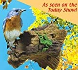 Audubon Entities The Natural Bird Guardian, Keep Birds Out of Reach from Squirrels, Blue Jays,...
