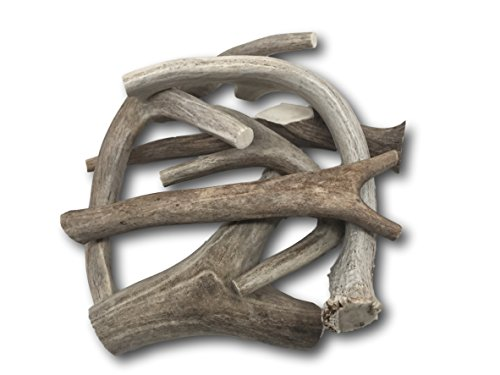 Premium Large Antler - ONE POUND (+/- an ounce) Variety Pack. Six Inches or Longer - Medium, Large and XL. Top Dog Chews! 100% Customer Satisfaction Guarantee!