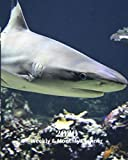 2020 Weekly and Monthly Planner: Gray Shark - Monthly Calendar with U.S./UK/ Canadian/Christian/Jewish/Muslim Holidays- Calendar in Review/Notes 8 x 10 in.- Sea Marine Life Nature
