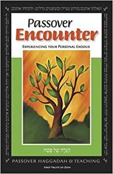 Book Passover Encounter: Experiencing Your Personal Exodus