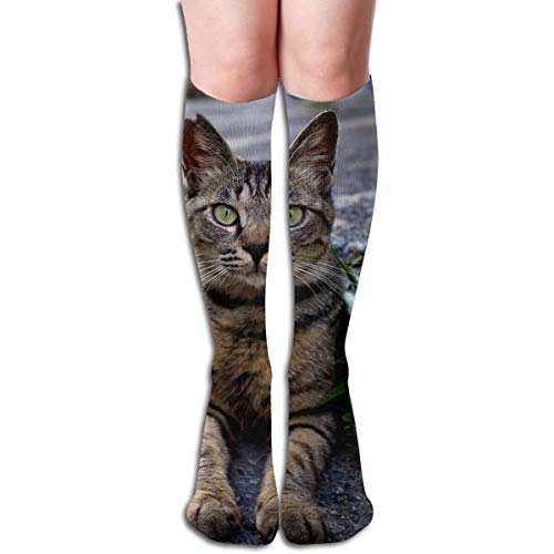 Bandnae 19.68 Inch Compression Socks Asphalt Road Cat High Boots Stockings Long Hose for Yoga Walking for Women Man
