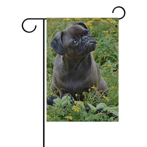 RH Studio Garden Flag Home Decorative Animal Dog Domestic Pet Farm Pickup House Yard Decoration, Rustic Seasonal Outdoor Décor Flag 12x18 Inches(Without Flagpole)
