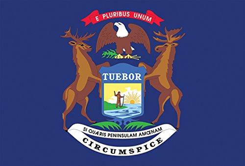 (Toland Home Garden Michigan State Flag 12.5 x 18 Inch Decorative USA Garden Flag)