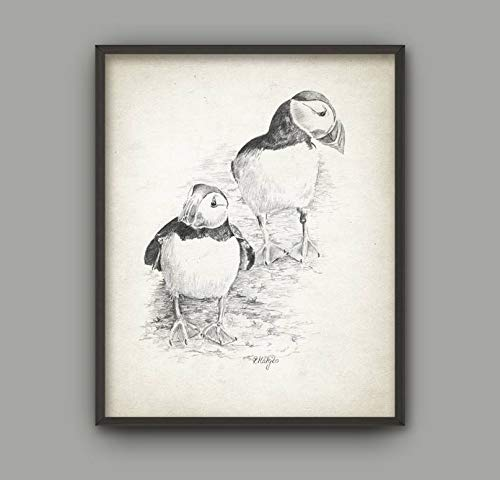 Les Connie Puffin Bird Art Print Puffin Pencil Drawing Print Puffin Decor Puffin Bird Picture Puffin Wall Art Print Sea Bird Art Poster