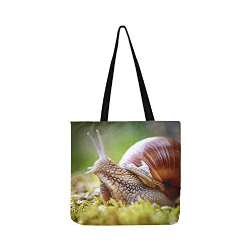 Grocerie Tote Bag Snail Glid On The Wet Wooden Bags Cloth Grocery Bag Tote For Shopping Groceries Books Kids Canvas Bag
