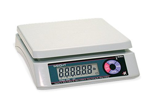 Rice Lake Ishida iPC Portable Bench Scale-30 lb Capacity (75457) (Ishida Scale)