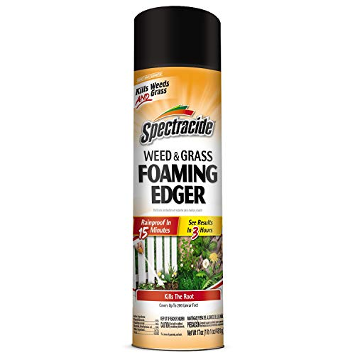 Spectracide Weed & Grass Foaming Edger, Aerosol, 17-Ounce, 12-Pack