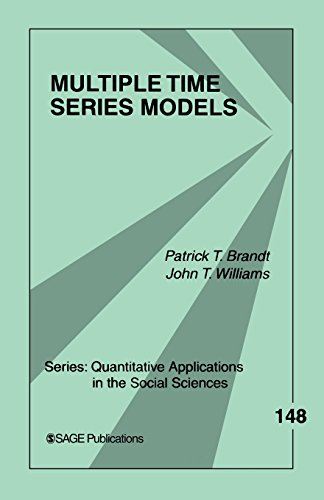 Multiple Time Series Models (Quantitative Applications in the Social Sciences) (Applied Meta Analysis For Social Science Research)