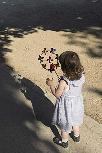 Girl Whirligig - Paris, Photography, girl, 3 years old, playing, whirligig, learning, fascinated, discovery, Luxembourg Garden, park, France, Europe, Art Print, Wall Art, Gift, Decor, Photo