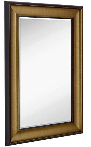 Smooth Transitional Framed Mirror | 1