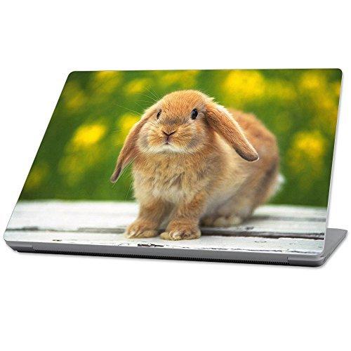 最安値で  MightySkins Protective (2017) Durable and Unique Vinyl Decal 13.3 wrap cover Rabbit Skin for Microsoft Surface Laptop (2017) 13.3 - Rabbit Brown (MISURLAP-Rabbit) [並行輸入品] B07896HV88, 飛騨高山の甚五郎商店:0303d2d7 --- a0267596.xsph.ru