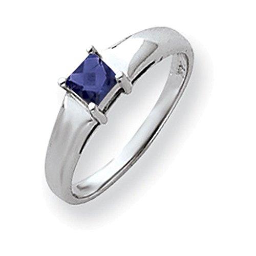 Jewelry Adviser Rings 14k White Gold 4mm Princess Cut Sapphire ring