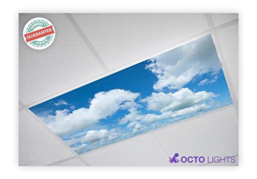 Cloud 002 2x4 Flexible Fluorescent Light Cover Ceiling Cloud Four Light