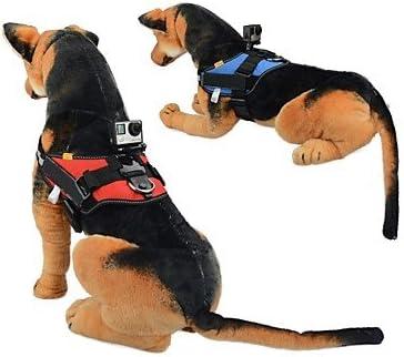 Arnés de arnés para perro, correa de pecho, trípode, soporte para ...