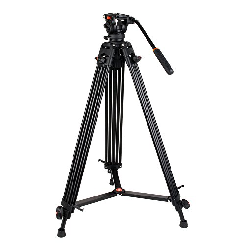 COMAN KX3636 Professional Video Tripod Heavy Duty Aluminum 74 Inch Twin Tubes with Q5 Fluid Head Max loading 13.2 LB for Pro DV Cameras Camcorders by COMAN