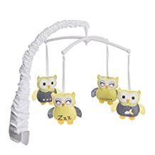 Halo Innovations 12428 BassiNest Swivel Sleeper-Mobile (Owls), Multi