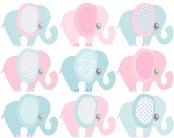 Amazon.com  Gender Reveal Baby Shower Pink and Blue Elephants ... 51d99b123