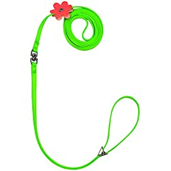 Cute Dog Collar For Girls or Boy Dseap Beauty Flower Clip Series Quick Adjustable Small Animal Puppy Dog Cat Leashes Collars Lead Chest Straps Chain Rope for Little Pet Kitty Poodle.7mm Width, Green.