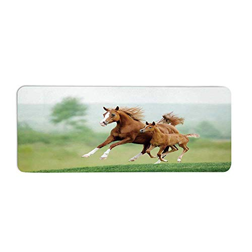 TecBillion Horse Decor Fashionable Long Door Mat,Running Chestnut Horses Mare and Foal Meadow Scenic Summer Day Outdoors for Home Office,23.6