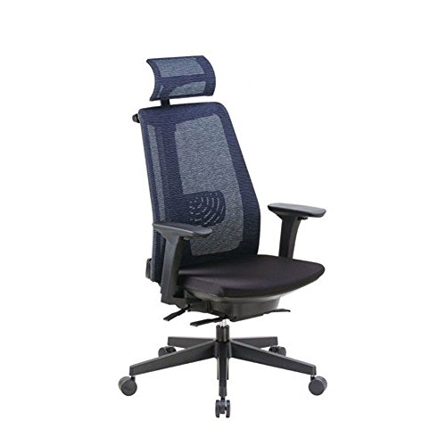 Mesh High Back Task Chair with Adjustable Height Arms and Headrest Dimensions: 27