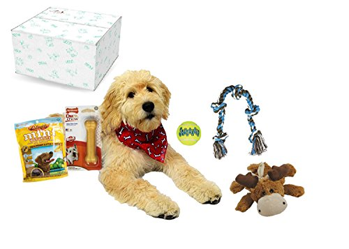 Cheap Open Road Goods Dog Gift Box/Dog & Puppy Gift Set – Perfect as an Adult Dog Toys & Treats Starter kit – Contains Top Names Like Zukes Chuckit and Kong!