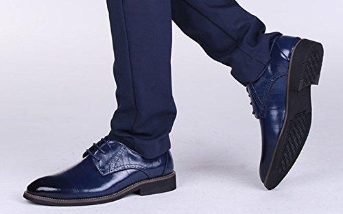 Chaussures Conseils Cuir Mode Multicolore en Lacets Chaussures Chaussures Hommes Simples blue LEDLFIE Hommes Business Véritable Cuir qWPXwABn8x