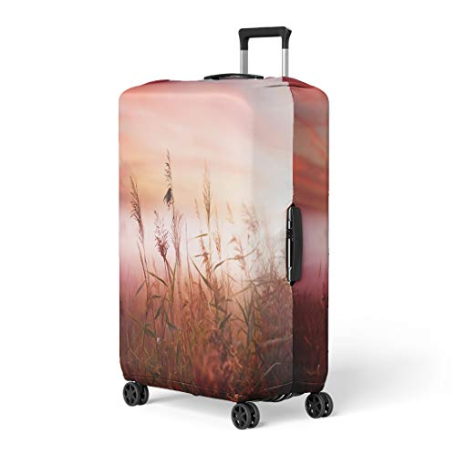 Pinbeam Luggage Cover Red Nature Foggy Landscape Early Morning Mist Pink Travel Suitcase Cover Protector Baggage Case Fits 18-22 inches