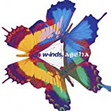 Ageha by W-Inds (2005-06-01)