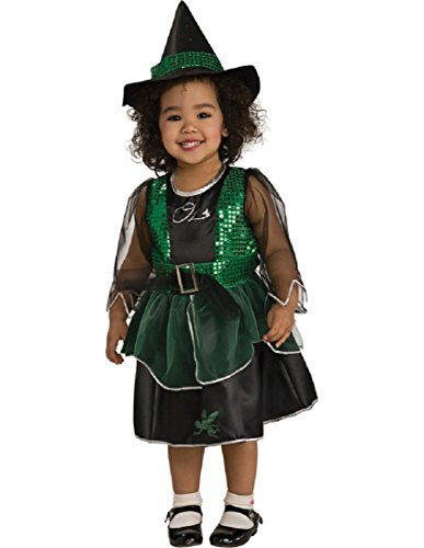 Wizard Of Oz Costume, Wicked Witch Costume - Small