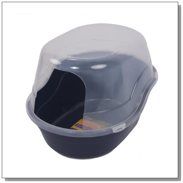 Big Litter Box For A Maine Coon Cat Blue Crystal Sky