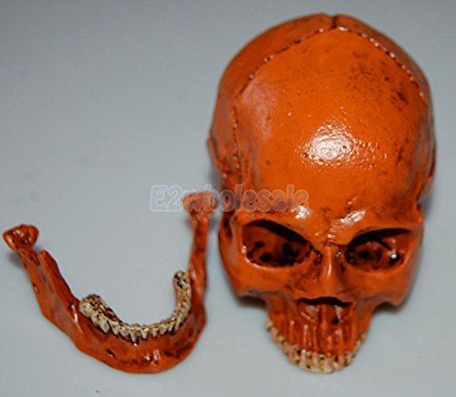 Resin Cranium Prop (Human Skull Cranium Replica Resin Model Medical Teach Party Bar Prop Yellow)