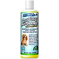 Mednet Direct Naturals MDN1008 Soothing Pet Shampoo with Oatmeal, 12-Ounce