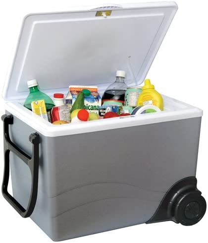 Top 8 Best Camping Coolers Reviews in 2020 5