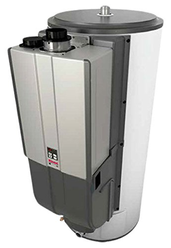 Rinnai CHS199100IN Demand Duo Commercial Hybrid Water Heating System
