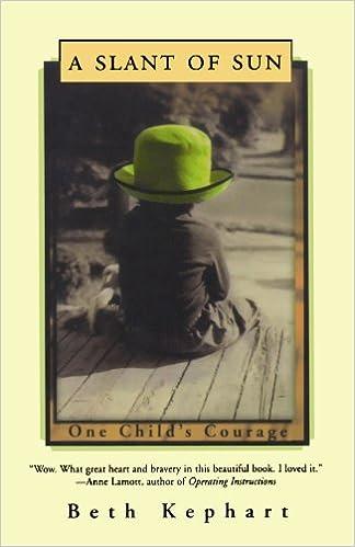 f4a50b61 A Slant of Sun: One Child's Courage: Beth Kephart: 9780393340983 ...