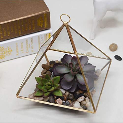 Gecko Pot Hanger - GONGting Geometric Pyramid Terrarium - Vertical Metal Glass Wall Hanging Tabletop Succulent Fern Moss Air Plants Holder for Miniature Outdoor Fairy Garden Gift (A)