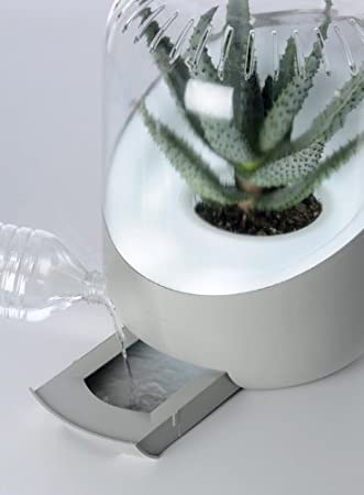 Andrea AND-001W - Purificador de aire natural, color blanco ...
